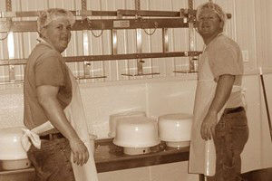 bandstra-brothers-frisian-farms-cheese